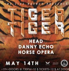 head tiger tiger